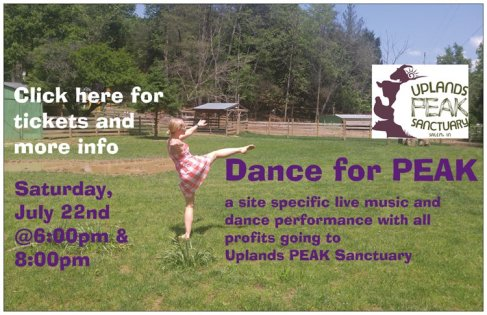 danceforpeakwebsite